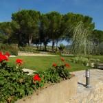 Flowers in the garden - Bed & Breakfast Il Cavarchino