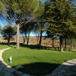 The lawn in the Park - Bed & Breakfast Il Cavarchino