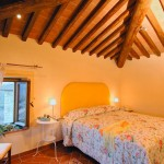 Camera Castagnoli - Bed & Breakfast Il Cavarchino